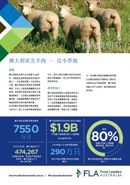 Lamb Fact Sheet - Chinese