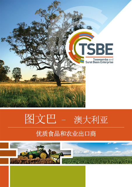 Export Capability Brochure - Chinese